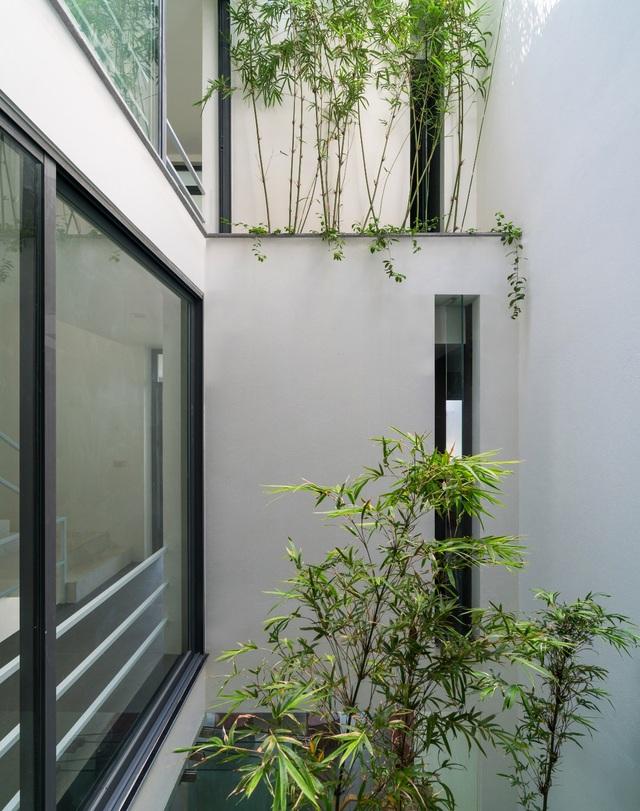 Trồng tre ngay giữa nhà, ngôi nhà Bắc Ninh gây ấn tượng mạnh bởi thiết kế độc đáo - 7