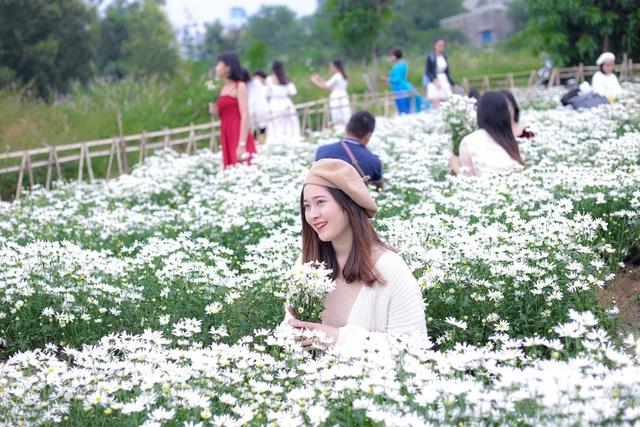 """Du khách hào hứng """"check – in"""" vườn cúc hoạ mi đầu tiên tại Đà Nẵng - 1"""
