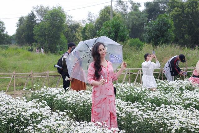 """Du khách hào hứng """"check – in"""" vườn cúc hoạ mi đầu tiên tại Đà Nẵng - 8"""