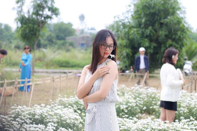 """Du khách hào hứng """"check – in"""" vườn cúc hoạ mi đầu tiên tại Đà Nẵng - 6"""