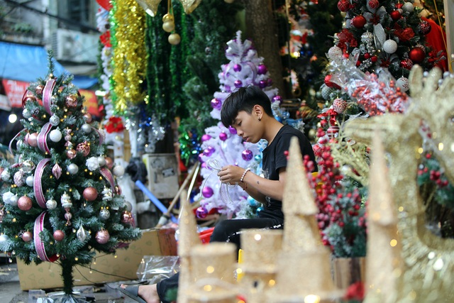Đường phố Hà Nội được trang hoàng rực rỡ đón Giáng sinh - 10