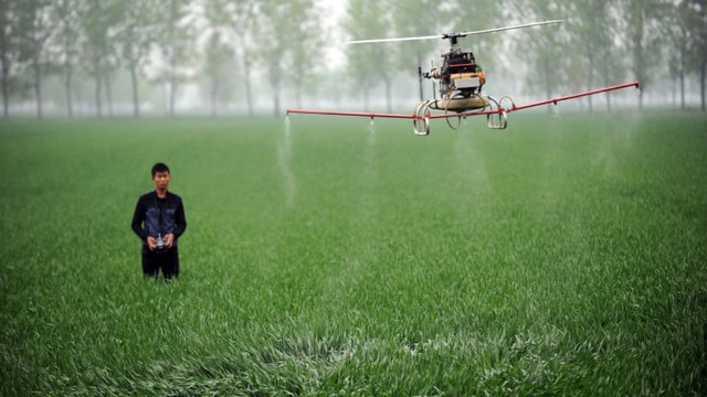 Châu Á cần 800 tỷ USD để đối phó với cuộc khủng hoảng lương thực - 2