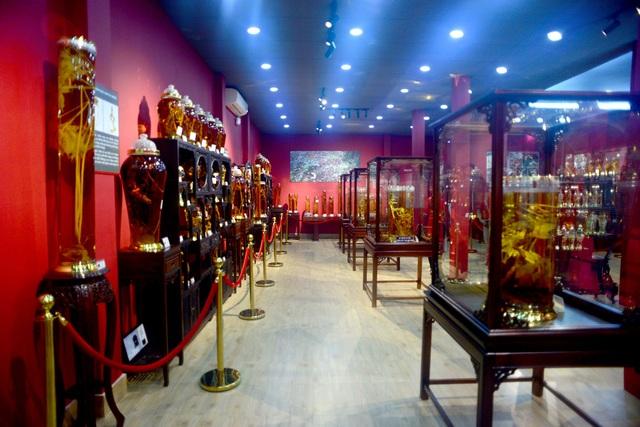 """bảo tàng """"báu vật đại ngàn"""" sâm Ngọc Linh.jpg"""