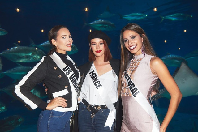 Ra mắt mẫu vương miện mới dành cho Hoa hậu Hoàn vũ 2019 - 15