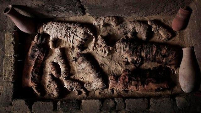 Kỳ lạ xác ướp sư tử, cá sấu, mèo trong các kim tự tháp Ai Cập - 5