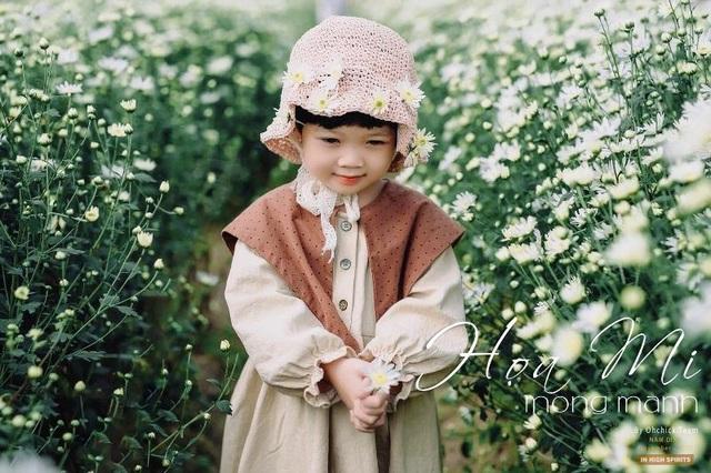 """Bạn trẻ đổ xô đến vườn cúc họa mi """"độc nhất"""" Nam Định chụp ảnh - 4"""