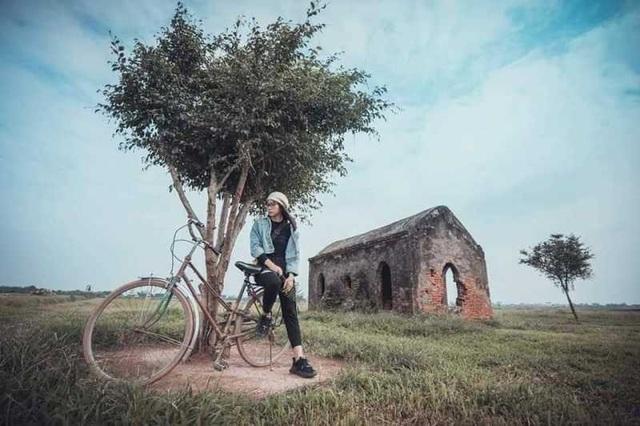 """Bạn trẻ đổ xô đến vườn cúc họa mi """"độc nhất"""" Nam Định chụp ảnh - 3"""