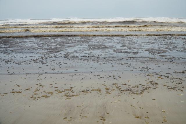 Đã xác định được nguyên nhân làm nước biển đổi màu - 1
