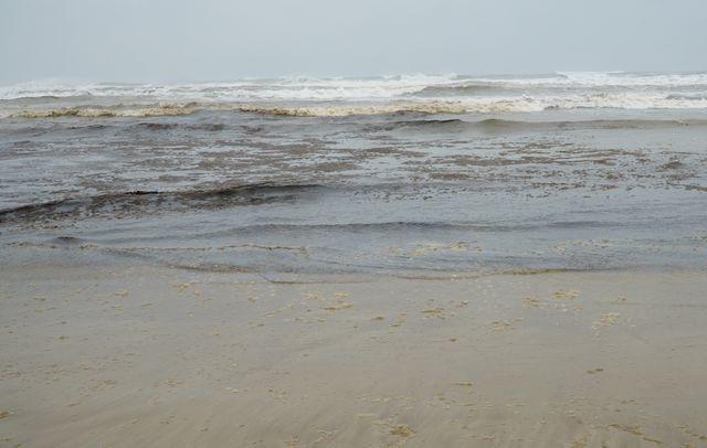 Tổng cục Môi trường phân tích mẫu nước biển đen ngòm ở khu vực Dung Quất - 2