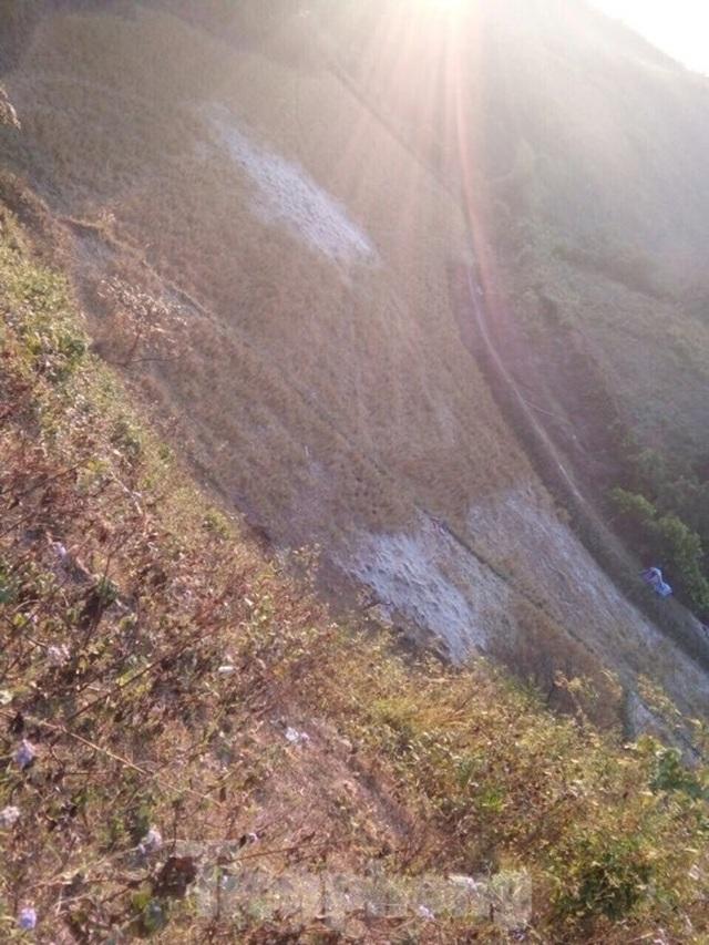 Sương muối phủ trắng cánh đồng ở Lạng Sơn trong cái rét căm căm - 3