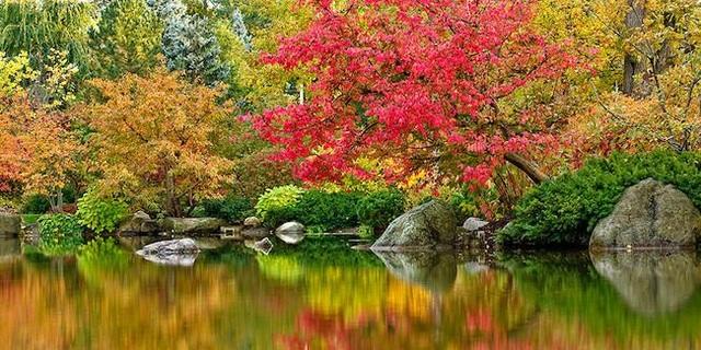 """Dự án 1,2 tỷ USD ở Quận 7 chi nghìn tỷ phát triển hàng chục vườn """"địa đàng bên sông"""" - 7"""
