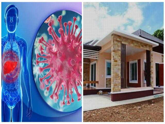 Có thể mắc ung thư máu do hóa chất độc hại trong nhà mới xây hoặc sửa chữa - 1