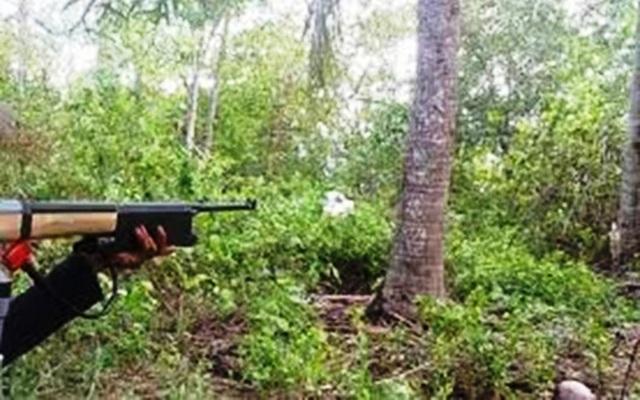 Đi săn sóc trong rừng, bị đạn lạc găm trúng bụng - 1