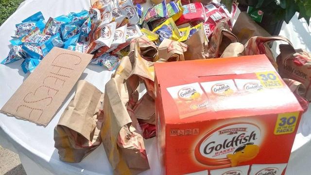 Mỹ: Bà mẹ 6 con phát hơn 100 suất ăn nhanh miễn phí mỗi ngày cho học sinh - 1