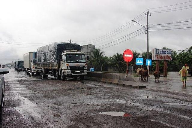 Thanh tra Chính phủ lý giải việc Quốc lộ 1 qua Bình Định, Phú Yên hỏng nặng - 1