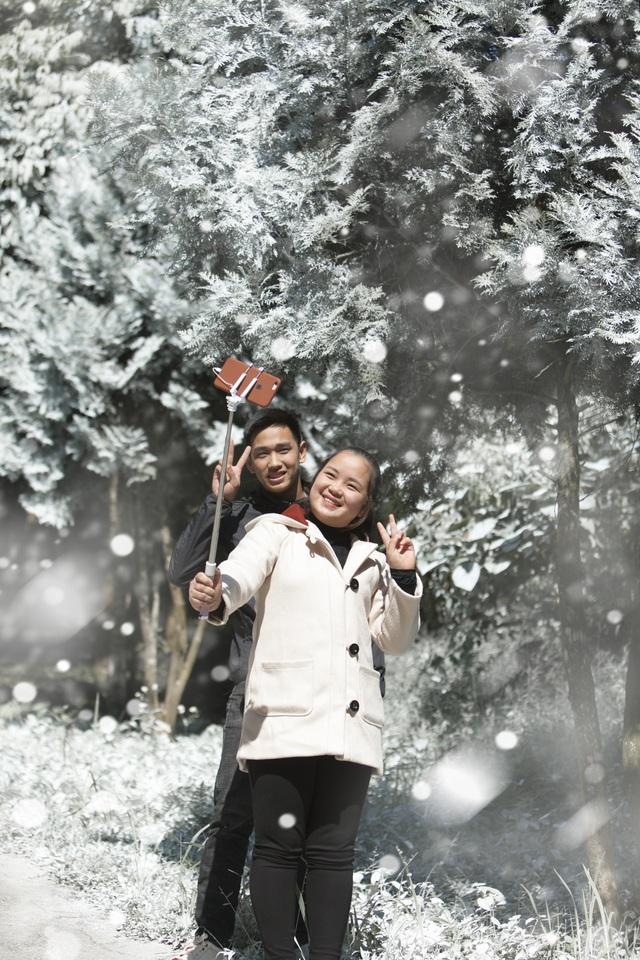"""Giới trẻ đổ xô về rừng bách xanh phủ tuyết trắng ở Ba Vì check-in """"sống ảo"""" - 3"""