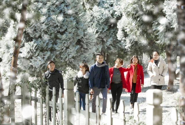 """Giới trẻ đổ xô về rừng bách xanh phủ tuyết trắng ở Ba Vì check-in """"sống ảo"""" - 4"""