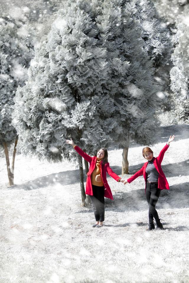 """Giới trẻ đổ xô về rừng bách xanh phủ tuyết trắng ở Ba Vì check-in """"sống ảo"""" - 7"""