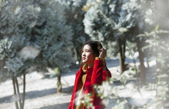"""Giới trẻ đổ xô về rừng bách xanh phủ tuyết trắng ở Ba Vì check-in """"sống ảo"""" - 6"""
