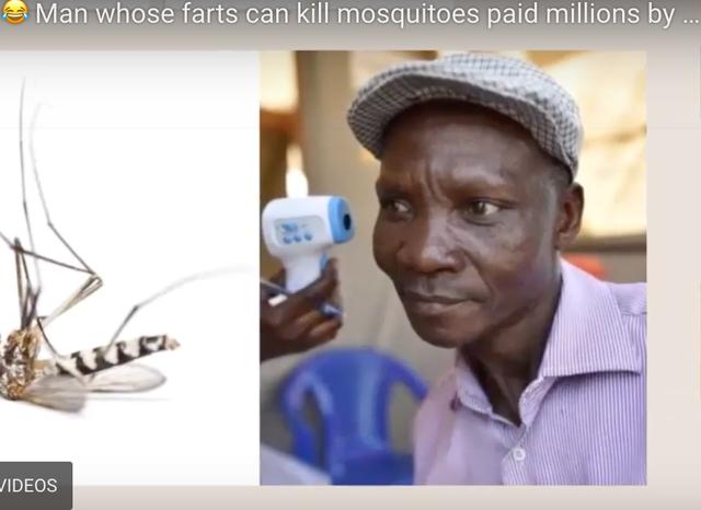 """Chỉ cần """"xì hơi"""" cũng giết được muỗi cách xa 6 mét - 1"""