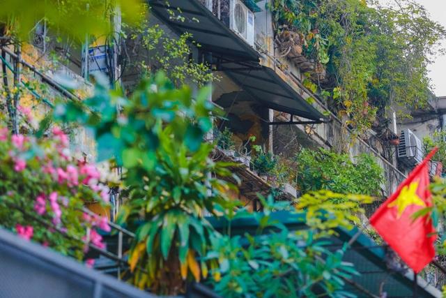 Dân Thủ đô cải tạo ban công nhà cũ thành các khu vườn treo lãng mạn - 3