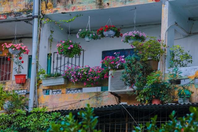 Dân Thủ đô cải tạo ban công nhà cũ thành các khu vườn treo lãng mạn - 5