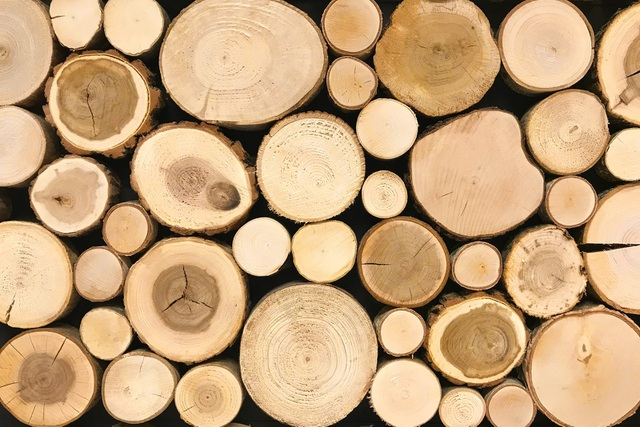 Kinh nghiệm chọn mua sàn gỗ Teak sử dụng ngoài trời - 1