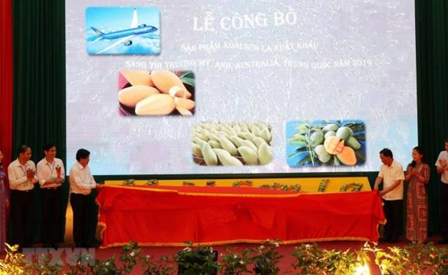 Sẵn sàng xuất khẩu nông sản chính ngạch sang Trung Quốc - 1