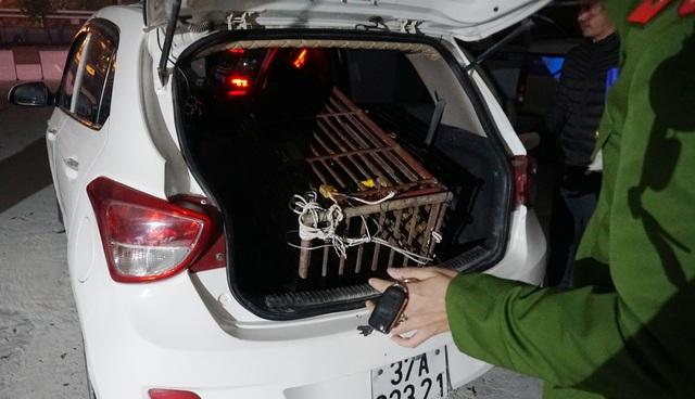 Gấu ngựa nặng 140kg bị nhét trong cốp xe taxi - 1