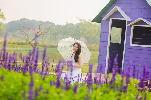 Lạc vào cánh đồng hoa Nữ hoàng xanh lãng mạn như châu Âu giữa lòng Hà Nội - 4