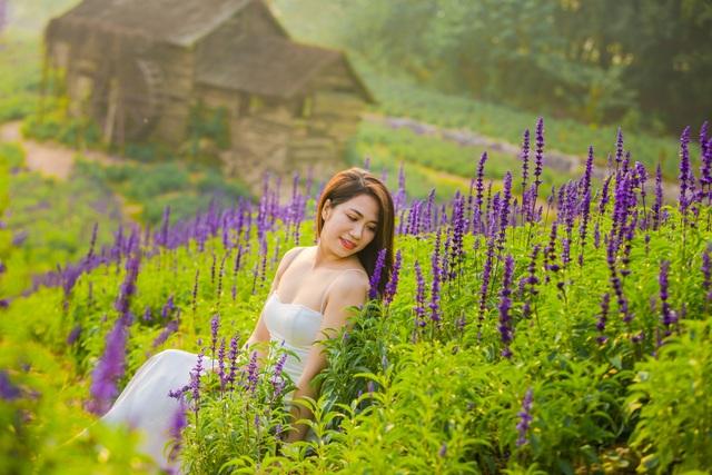 Lạc vào cánh đồng hoa Nữ hoàng xanh lãng mạn như châu Âu giữa lòng Hà Nội - 3