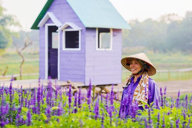 Lạc vào cánh đồng hoa Nữ hoàng xanh lãng mạn như châu Âu giữa lòng Hà Nội - 11