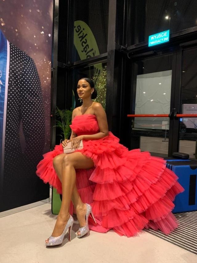 Hoa hậu Hoàn vũ 2011 diện váy cảm hứng hoa sen của nhà thiết kế Việt - 4