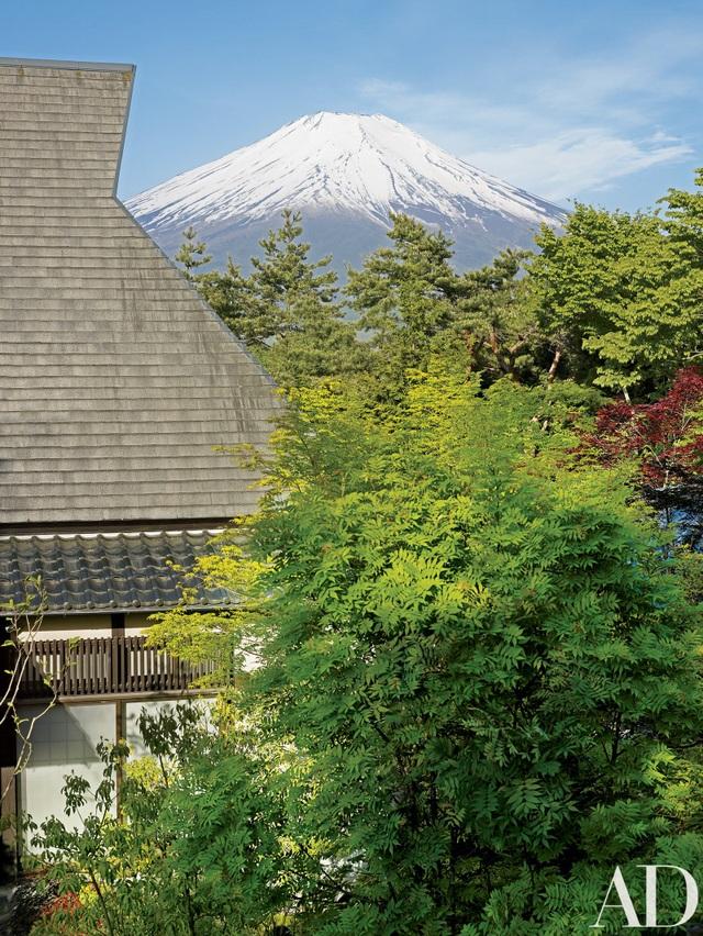 Đôi vợ chồng người Mỹ mua đất, làm nhà sống ẩn cư giữa rừng cây ở Nhật Bản - 2