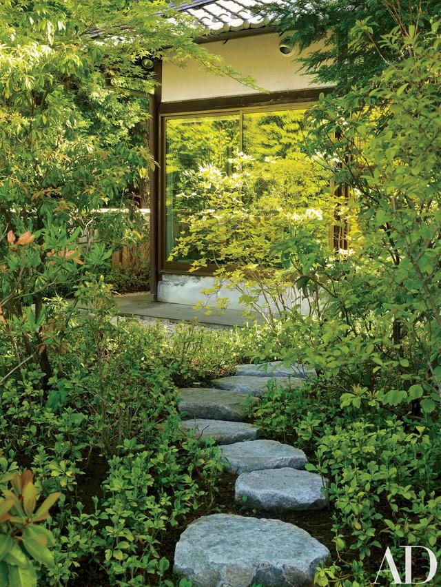 Đôi vợ chồng người Mỹ mua đất, làm nhà sống ẩn cư giữa rừng cây ở Nhật Bản - 8