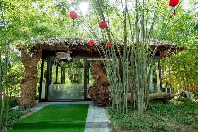 """""""Check-in"""" rừng tre nằm giữa Hội An và Đà Nẵng"""