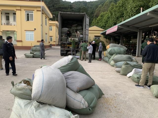 Bắt giữ 3 đối tượng buôn lậu hơn 100 tấn dược liệu qua nhiều tỉnh - 1