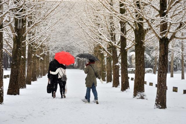 Khám phá xứ Hàn trong mùa tuyết rơi - 2