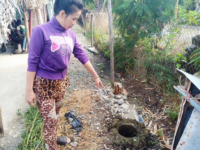 Diến tiến nóng vụ chặt cây trên đất đã mua, nguy cơ ngồi tù tại Kiên Giang! - 1