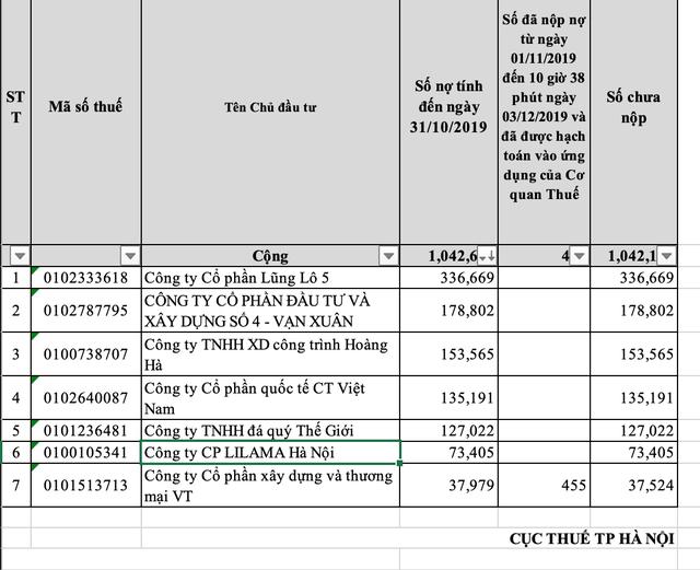 Lũng Lô 5 cùng một số đại gia nợ hàng nghìn tỷ đồng tiền sử dụng đất - 2