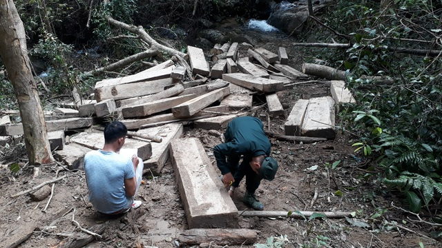 """Núp bóng lấy gỗ làm nhà, lâm tặc mở """"công trường khai thác gỗ tại Kon Tum! - 2"""