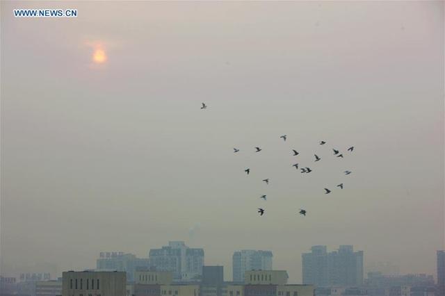Bắc Kinh vật lộn thoát mác thủ đô ô nhiễm toàn cầu - 2