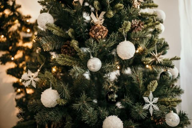 Giáng sinh yên bình tại HOLM - 3