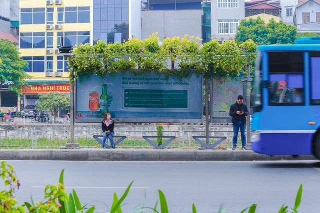"""Người Hà Nội thích thú với những """"khu vườn treo"""" ấn tượng trên nóc trạm chờ xe buýt - 1"""