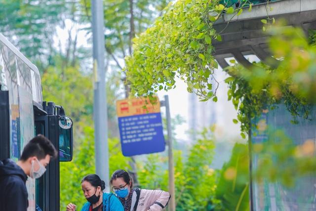 """Người Hà Nội thích thú với những """"khu vườn treo"""" ấn tượng trên nóc trạm chờ xe buýt - 2"""