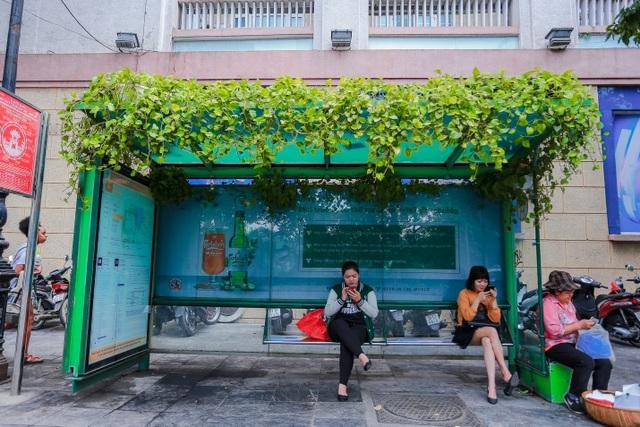 """Người Hà Nội thích thú với những """"khu vườn treo"""" ấn tượng trên nóc trạm chờ xe buýt - 6"""