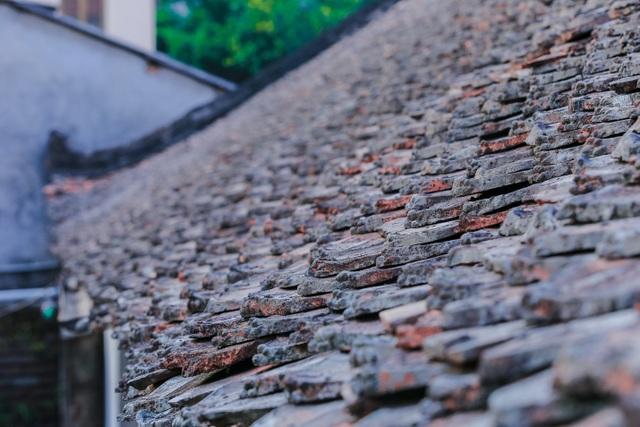Độc nhất nhà cổ 300 tuổi làm từ gỗ lim, nằm giữa khu vườn xanh mát mắt ở Hà Nội - 6
