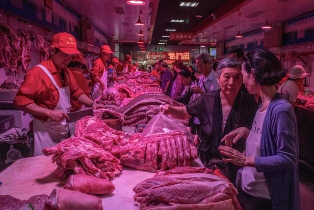 """Trung Quốc lao đao vì """"cơn bão"""" dịch tả lợn - 1"""