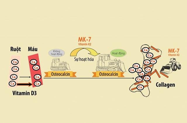 Chuyên gia hướng dẫn mẹ cách chọn Vitamin D3 cho con - 1