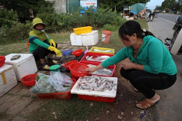 Ngư dân kiếm tiền triệu từ cá khoai những ngày cuối năm - 4